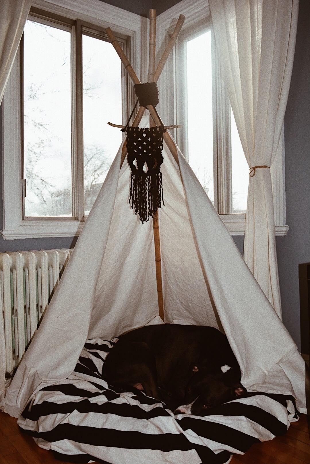 diy tipi pour chiens chats. Black Bedroom Furniture Sets. Home Design Ideas