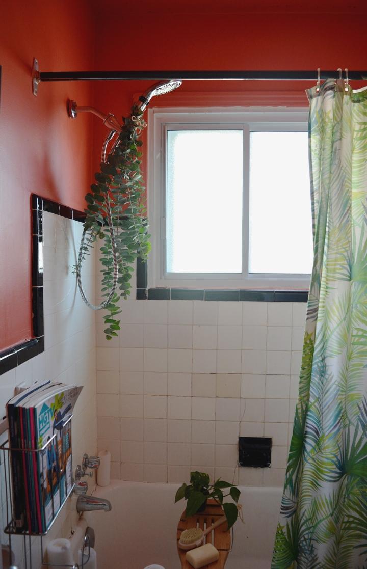 eucalyptus shower deco salle de bain douche spa